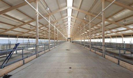 Société pour la réalisation d'un audit avant la construction d'un entrepôt de stockage à Chambéry